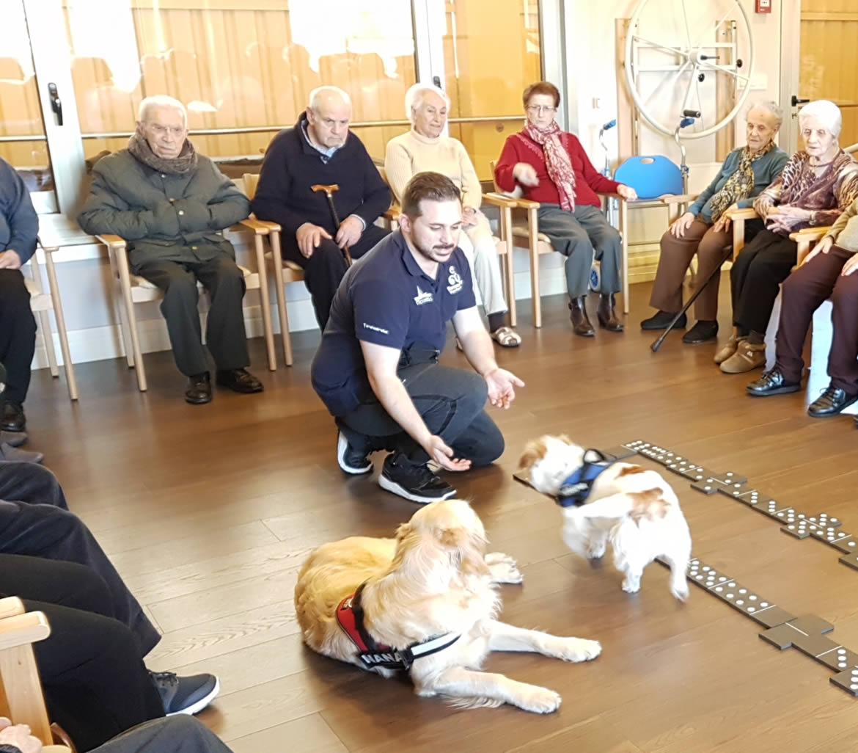 Terapias con animales en el Centro de día Hera de A coruña